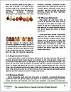 0000086806 Word Template - Page 4