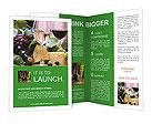 0000086830 Brochure Template