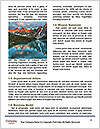 0000086834 Word Template - Page 4