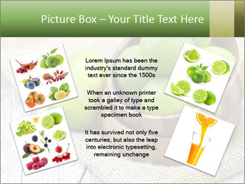 0000086848 PowerPoint Template - Slide 24