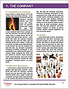 0000086853 Word Template - Page 3