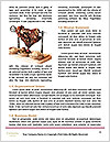 0000086855 Word Template - Page 4