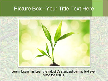 0000086857 PowerPoint Template - Slide 15