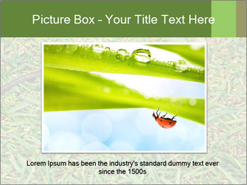 0000086857 PowerPoint Template - Slide 16