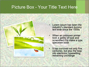 0000086857 PowerPoint Template - Slide 20