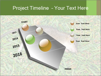 0000086857 PowerPoint Template - Slide 26