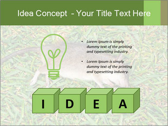 0000086857 PowerPoint Template - Slide 80