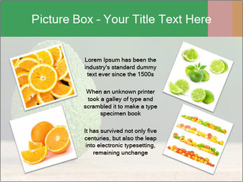 0000086869 PowerPoint Templates - Slide 24