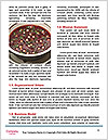 0000086871 Word Templates - Page 4