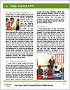 0000086872 Word Template - Page 3