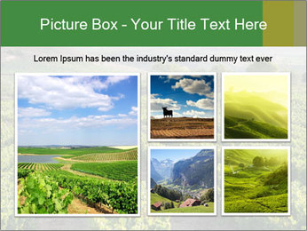 Thailand PowerPoint Template - Slide 19