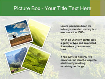 Thailand PowerPoint Template - Slide 23