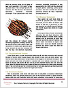 0000086875 Word Template - Page 4