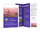 0000086881 Brochure Template