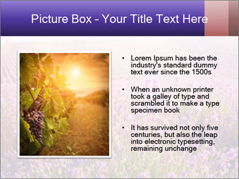 0000086881 PowerPoint Template - Slide 13