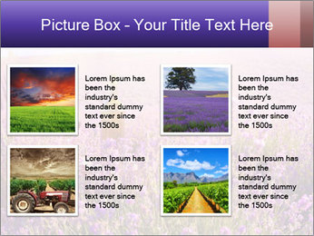 0000086881 PowerPoint Template - Slide 14
