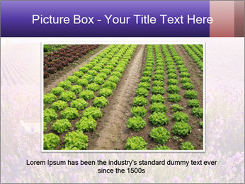 0000086881 PowerPoint Template - Slide 16