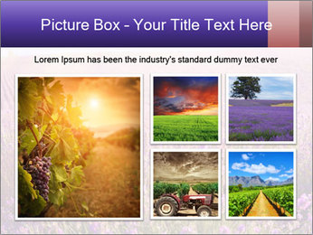 0000086881 PowerPoint Template - Slide 19