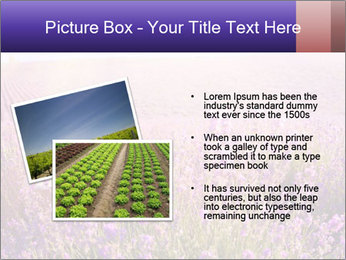 0000086881 PowerPoint Template - Slide 20