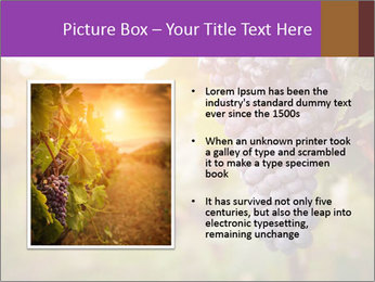 0000086885 PowerPoint Template - Slide 13