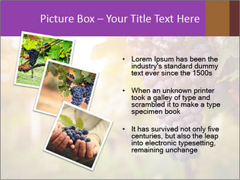 0000086885 PowerPoint Template - Slide 17