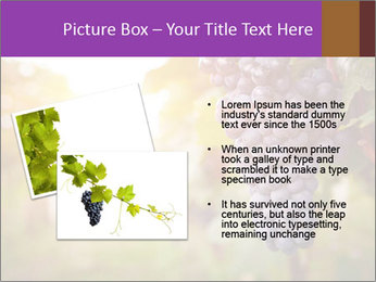 0000086885 PowerPoint Template - Slide 20