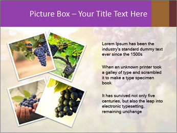 0000086885 PowerPoint Template - Slide 23