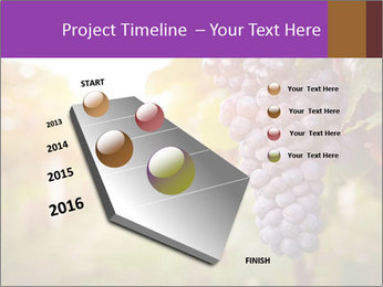 0000086885 PowerPoint Template - Slide 26