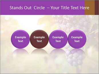 0000086885 PowerPoint Template - Slide 76