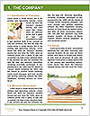 0000086888 Word Template - Page 3