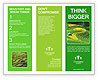 0000086889 Brochure Template