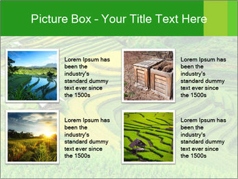 0000086889 PowerPoint Template - Slide 14