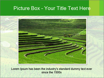 0000086889 PowerPoint Template - Slide 15
