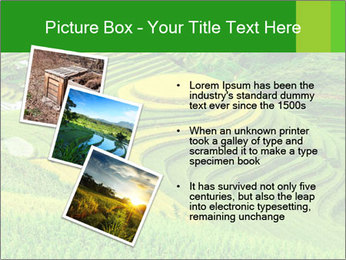 0000086889 PowerPoint Template - Slide 17