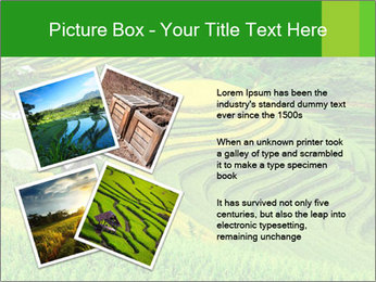 0000086889 PowerPoint Template - Slide 23