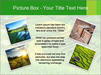 0000086889 PowerPoint Template - Slide 24