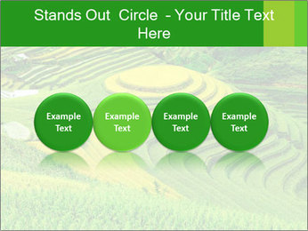 0000086889 PowerPoint Template - Slide 76