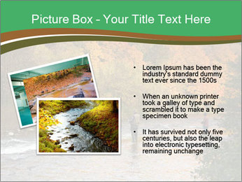 Fall Fishing PowerPoint Template - Slide 20