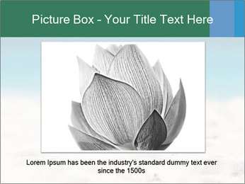 0000086905 PowerPoint Template - Slide 15