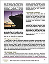 0000086906 Word Templates - Page 4