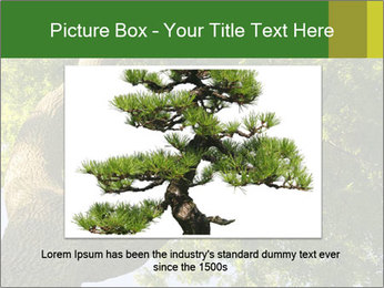 0000086925 PowerPoint Templates - Slide 16
