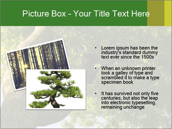 0000086925 PowerPoint Templates - Slide 20