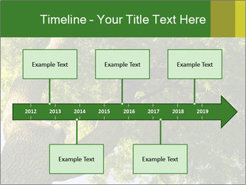 0000086925 PowerPoint Templates - Slide 28