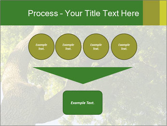 0000086925 PowerPoint Templates - Slide 93