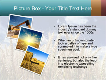 0000086927 PowerPoint Template - Slide 17