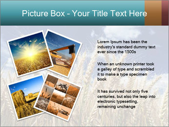 0000086927 PowerPoint Template - Slide 23