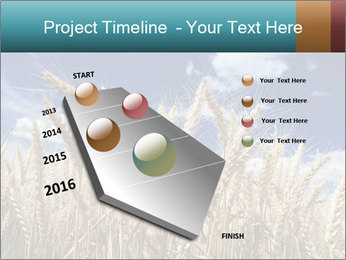 0000086927 PowerPoint Template - Slide 26