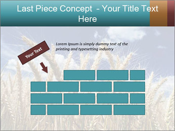 0000086927 PowerPoint Template - Slide 46