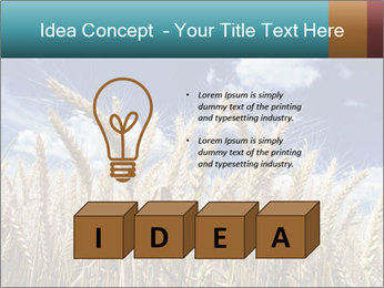 0000086927 PowerPoint Template - Slide 80