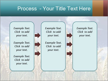 0000086927 PowerPoint Template - Slide 86